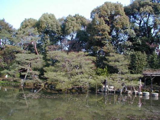 Japanese garden at Heian jingu shrine