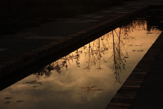 Treasure Garden, Tatebayashi, reflection