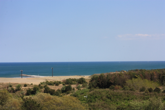 Hitachi seaside park, Pacific ocean